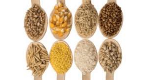 Des céréales plutôt sans gluten naturopathie